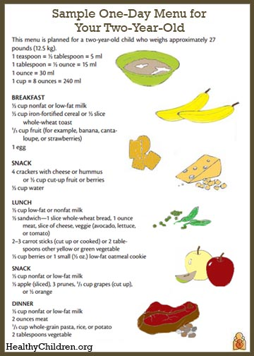 Sample menu for a two year old for 1 year old not eating table food