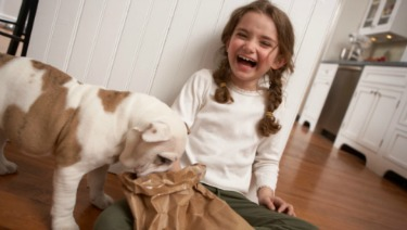 Tips for Choosing the Right Pet for Your Family